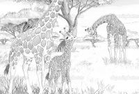 African Safari Coloring Pages - 10 Of Savannah Landscape Coloring Pages Safari Giraffe Download
