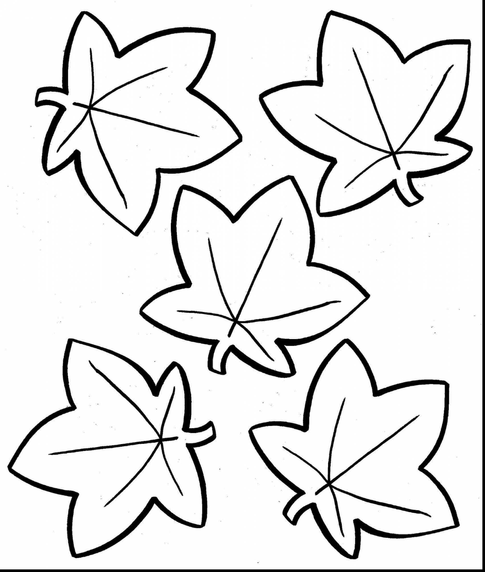 Pre Kinder Coloring Pages - Leaf Coloring Pages for Preschool Gallery