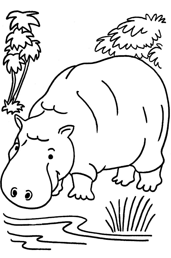 Wildlife Safari Coloring Pages Cartoon Animal Free Printable Animals ...