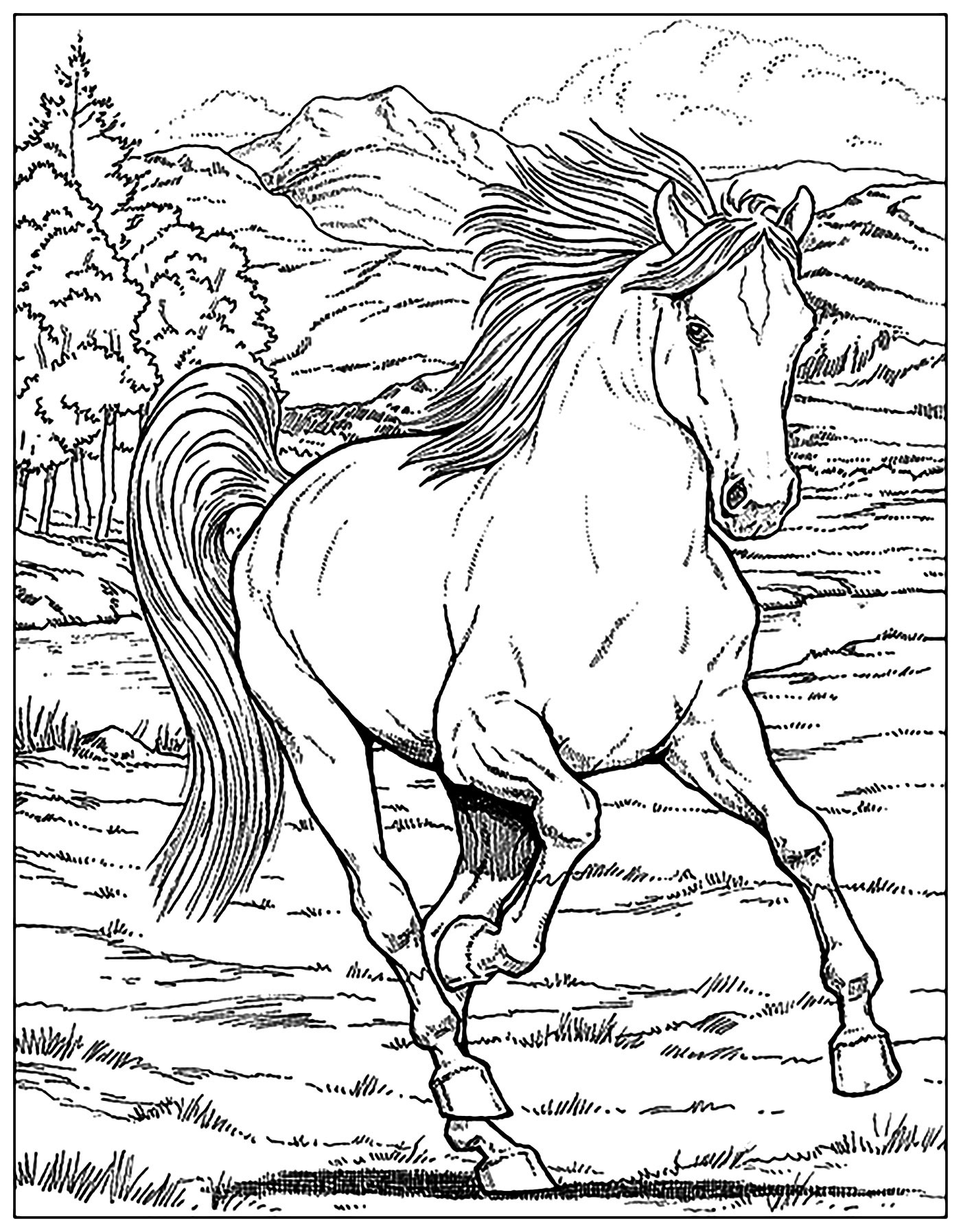Adult Coloring Page Horse Printable Of Horse Detailed Coloring Pages Gallery