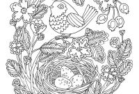 Coloring Pages Birds - Adult Coloring Pages Birds Gallery Gallery