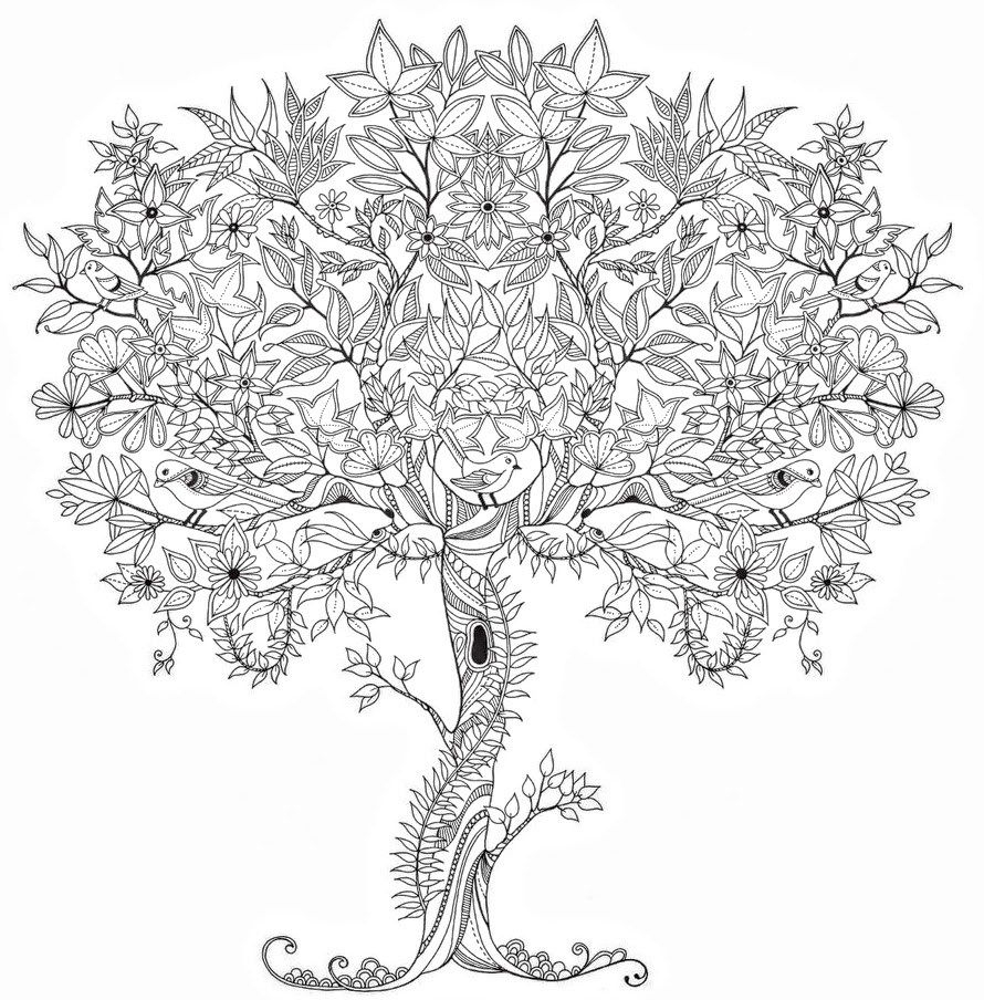 Adult Coloring Pages Tree 1 Adult Coloring Pages Collection Of Noted Coloring Picture A Tree Pages Unknown Resolutions Printable