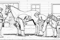 Coloring Pages Of Horses - Akhal Teke Lineart Google Search Artwork Pinterest Gallery