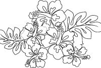 Coloring Pages Hawaiian Flowers - Awesome Hawaiian Flower Coloring Pages Collection Printable to Print