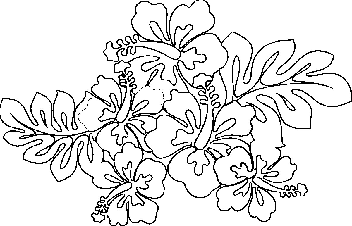 Coloring Pages Hawaiian Flowers Collection 11m - To print for your project