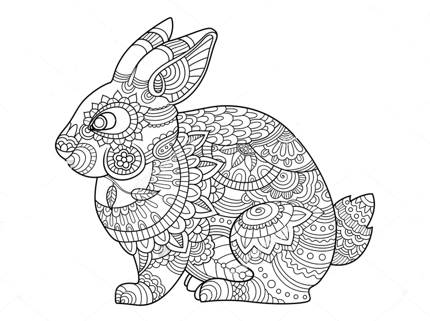 Coloring Pages Of A Rabbit Printable | Free Coloring Sheets