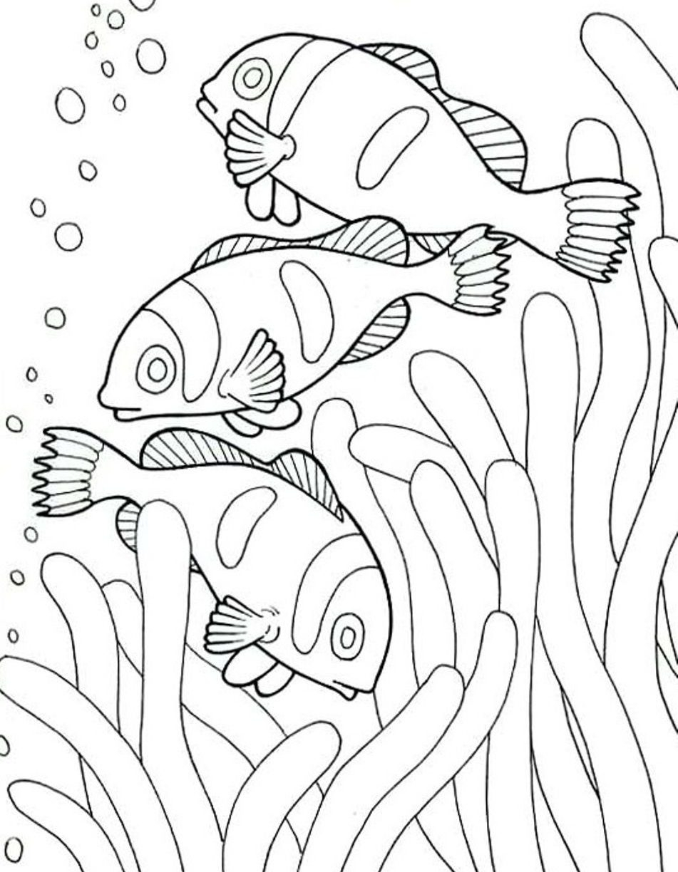 Animals Coloring Pages to Print Printable | Free Coloring Sheets
