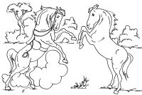 Coloring Pages Of Horses - Baby Horse Coloring Pages Gallery