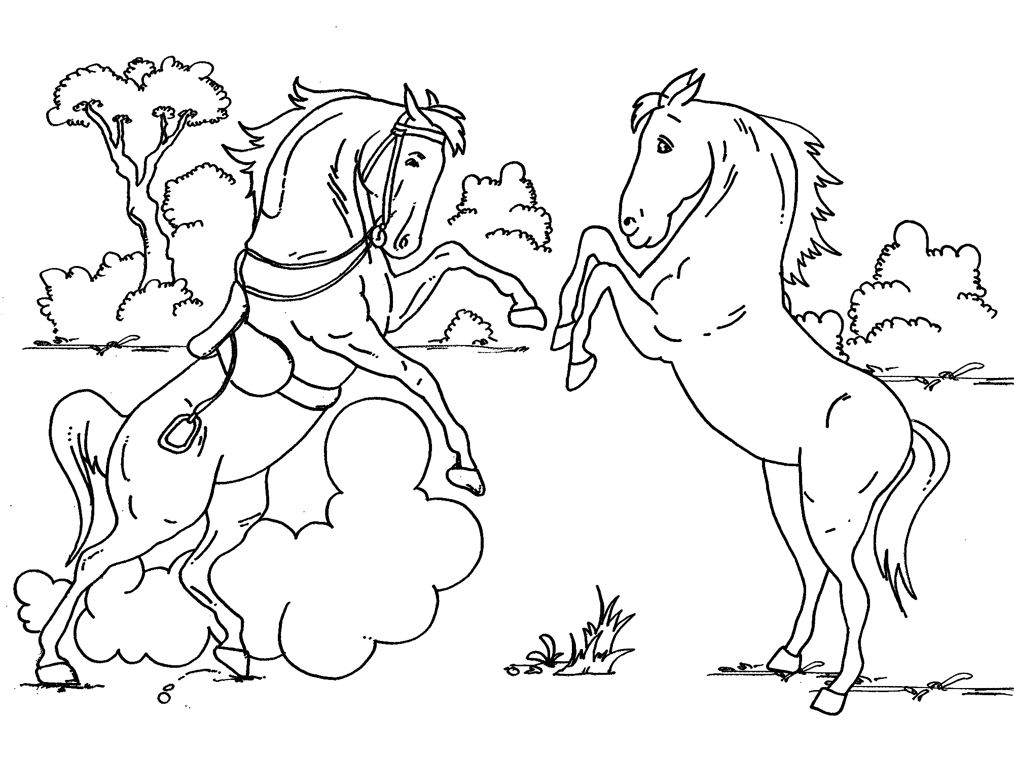 Baby Horse Coloring Pages Gallery Of Sturdy Coloring Page A Horse Pages Horses R 3353 Unknown Download