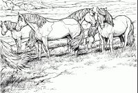 Coloring Pages Of Horses - Best Adult Coloring Pages Horse Printable Design Collection