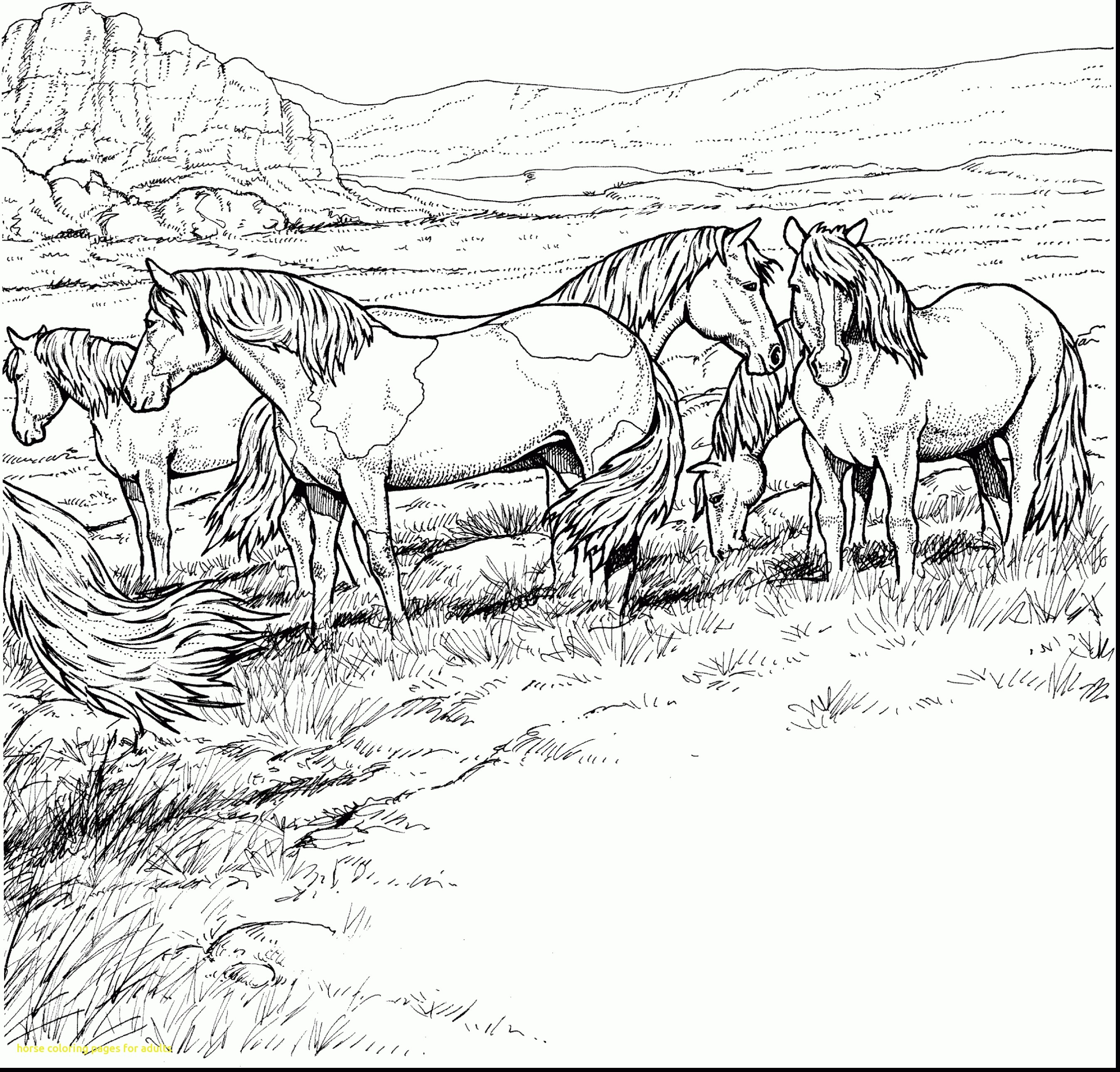 Best Adult Coloring Pages Horse Printable Design Collection Of Horse Detailed Coloring Pages Gallery