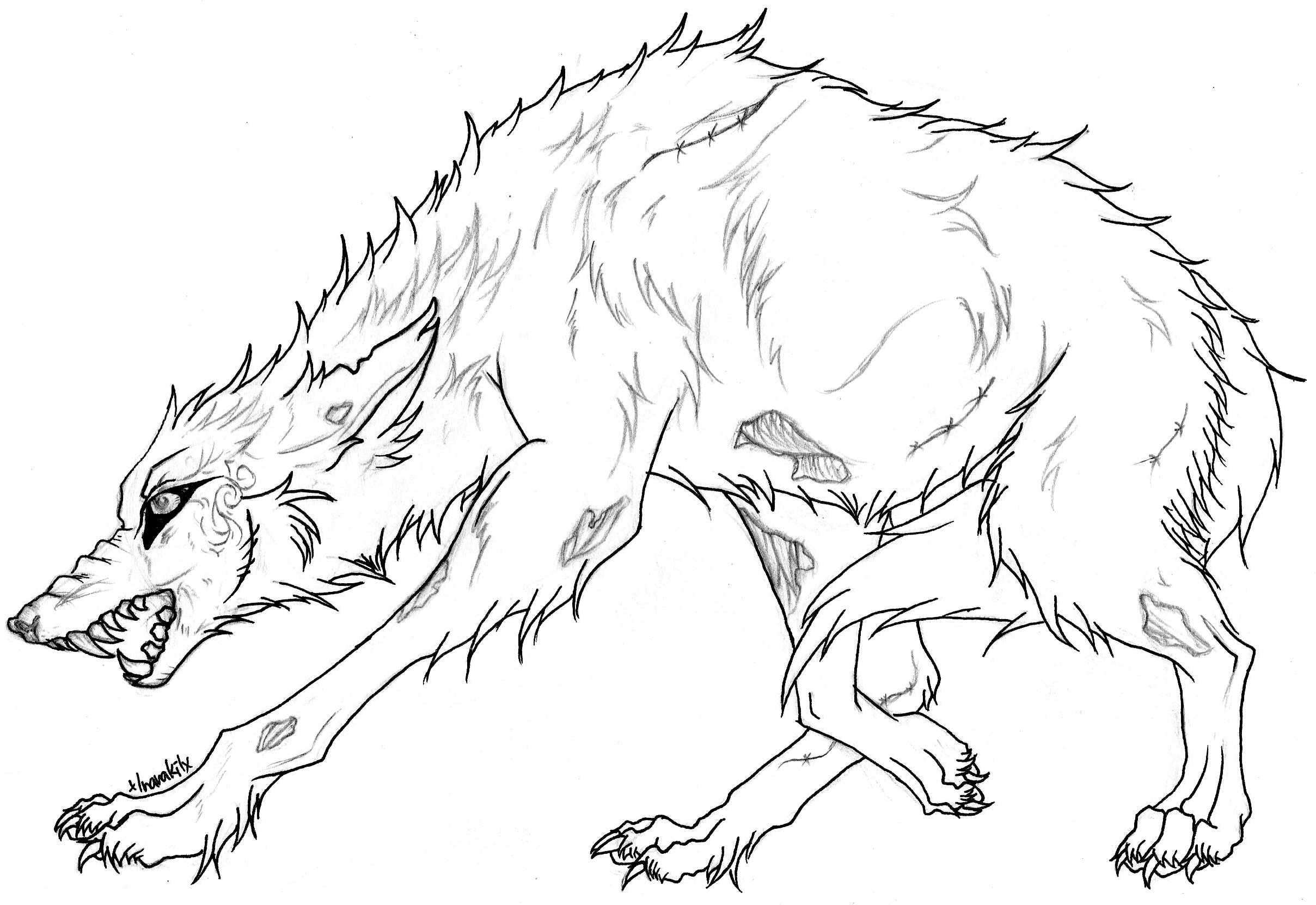 Best Angry Wolf Coloring Pages Free 2228 Printable Coloringace To Print