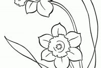Daffodils Coloring Pages - Best Line Drawings Snowdrops Google Search Printable