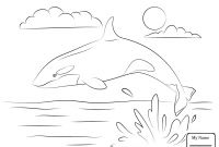 Cartoon Whale Coloring Pages - Best Sure Fire Killer Whale Coloring Pages Cute Cartoon Mammals Gallery