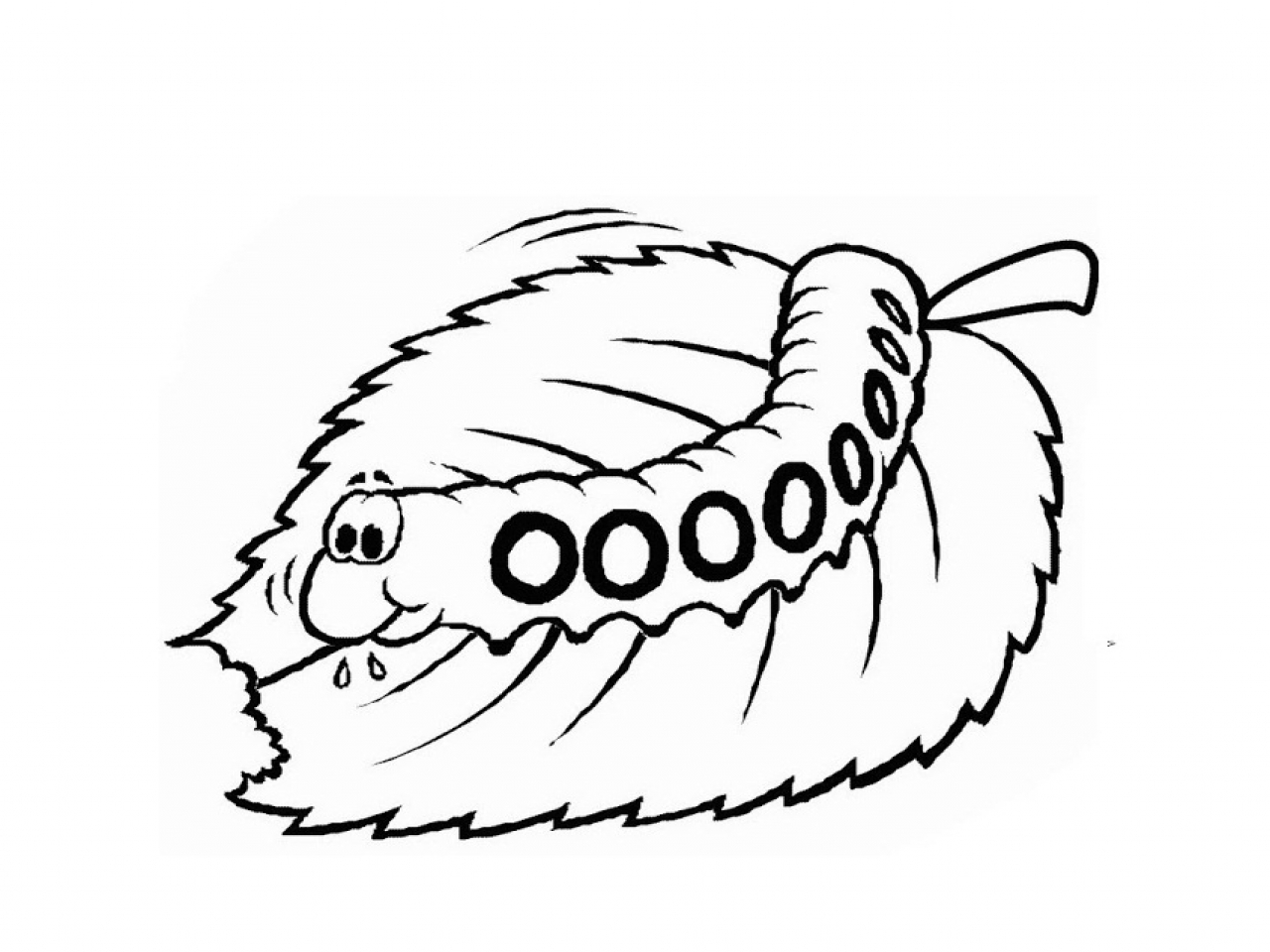 printable caterpillar coloring pages collection free coloring sheets