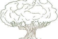 Tree Coloring Pages - Coloring Book and Pages Tree Coloring Pages for Preschoolersacacia Printable
