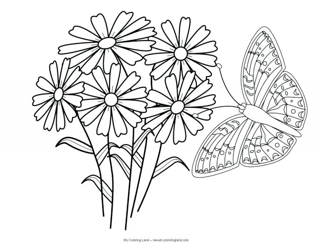 Coloring Pages Free butterfly Coloring Pages for Kids Line Free to Print Of Detailed Coloring Pages for Adults Collection