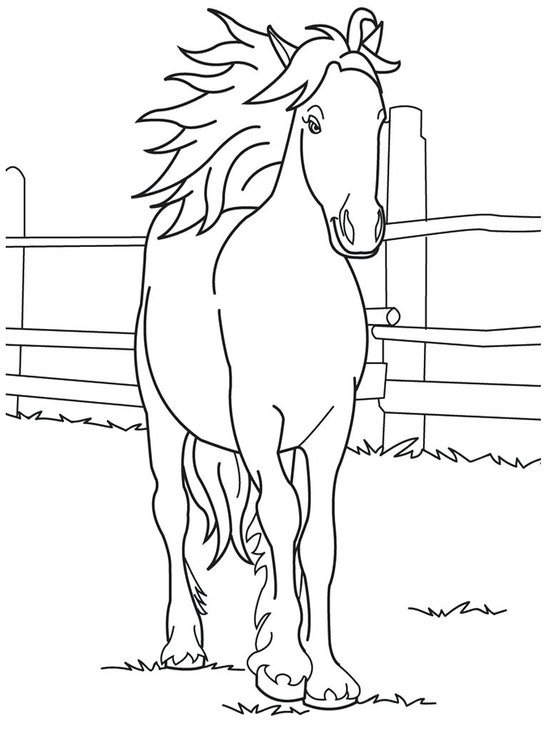 Coloring Pages Free Horse Coloring Pages for Horses Line Games to Print Of Sturdy Coloring Page A Horse Pages Horses R 3353 Unknown Download