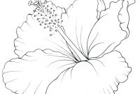 Coloring Pages Hawaiian Flowers - Coloring Pages Hawaii Coloring Pages Flowers Map Hawaii Coloring Printable