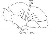 Coloring Pages Hawaiian Flowers - Coloring Pages Hawaiian Flowers Hibiscus Ivanvalencia Download