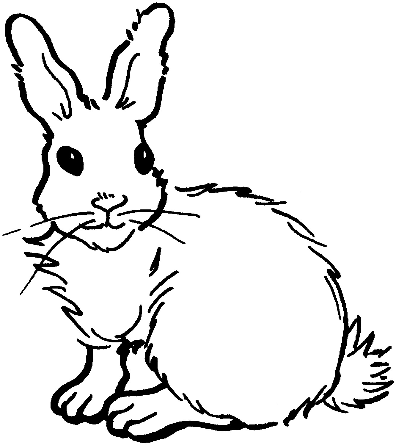 Coloring Pages Rabbit Best Free Printable Rabbit Coloring Pages Gallery Of Remarkable Realistic Bunny Coloring Pages Rabb Unknown Download