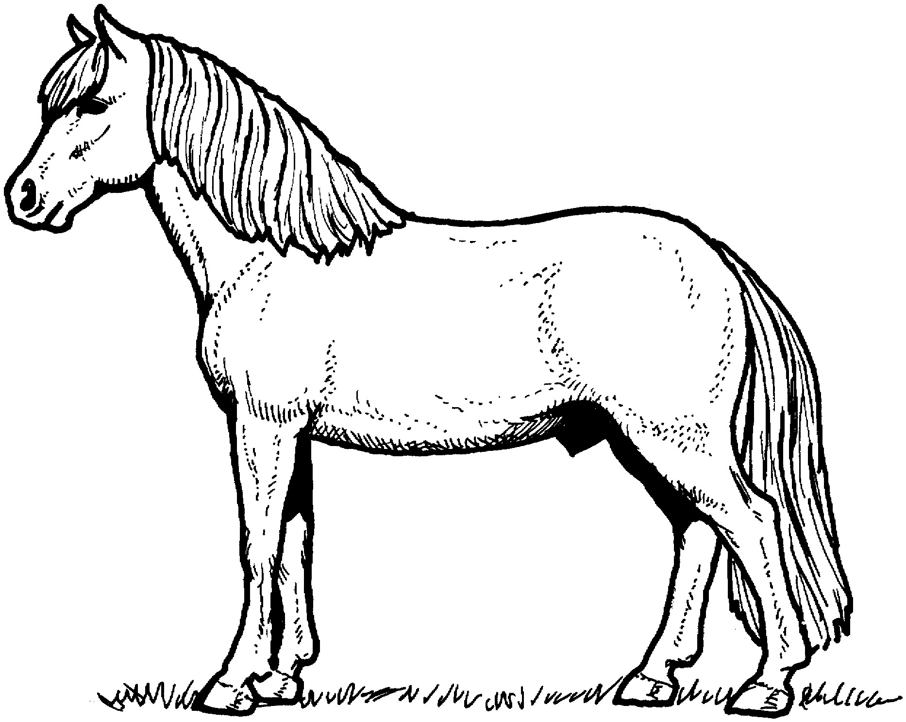 Coloring Pages Of Horses Printable 14e - Free For kids