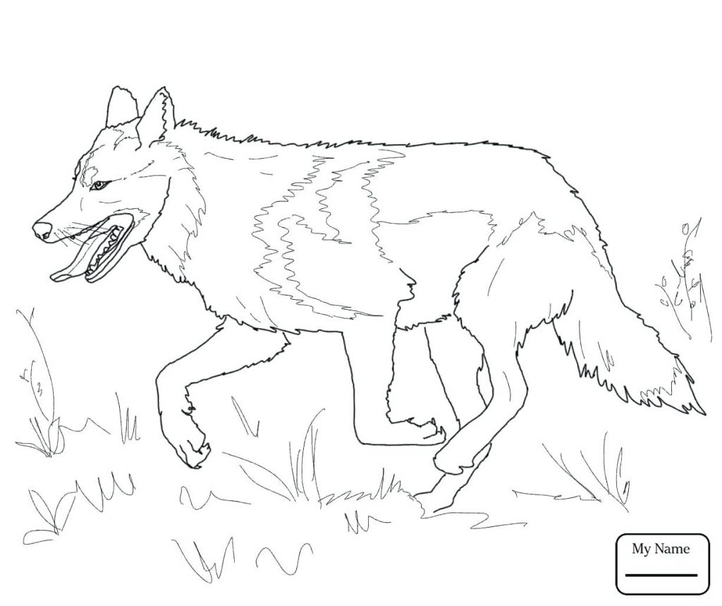 Coloring Pages Wolf Coloring Pages the Red Head Printable Of Wolves Coloring Pages Wolf Coloring Pages Free Coloring Pages Collection