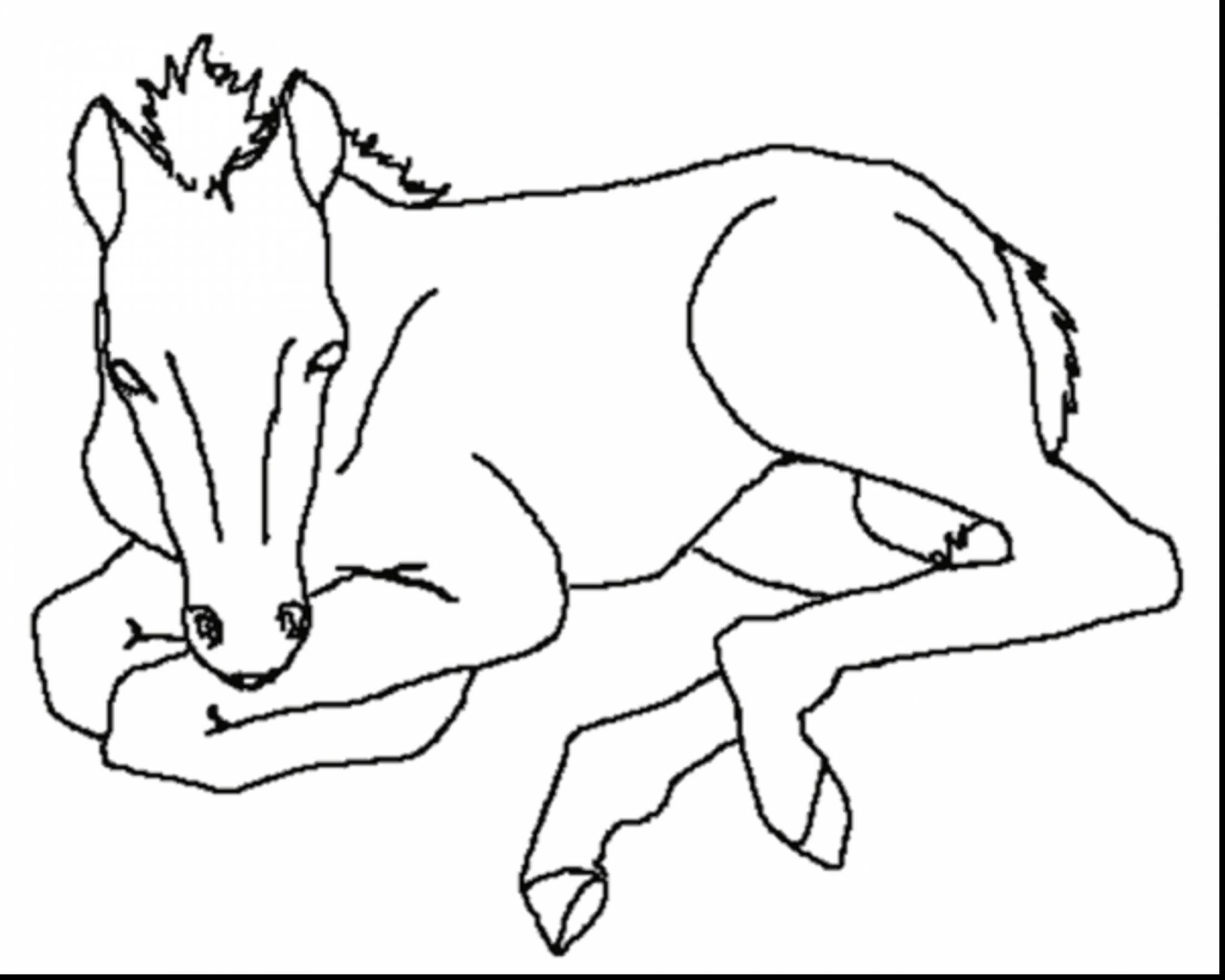 Cute Coloring Pages Baby Horses to Print Of Sturdy Coloring Page A Horse Pages Horses R 3353 Unknown Download