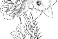 Daffodils Coloring Pages - Daffodil Coloring Page 2855 to Print