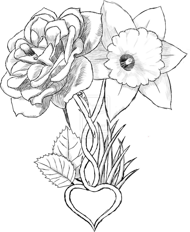 Daffodil Coloring Page 2855 to Print Of Daffodil Coloring Pages Gallery