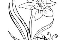 Daffodils Coloring Pages - Daffodil Coloring Pages Gallery