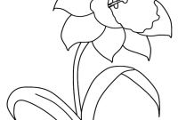 Daffodils Coloring Pages - Daffodil Coloring Pages Veles Collection