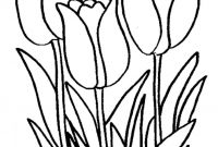 Daffodils Coloring Pages - Daffodil Drawing Outline at Getdrawings to Print