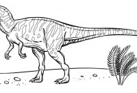 Dinosaurs Coloring Pages - Dinosaur Printable Coloring Pages Idealstalist Gallery