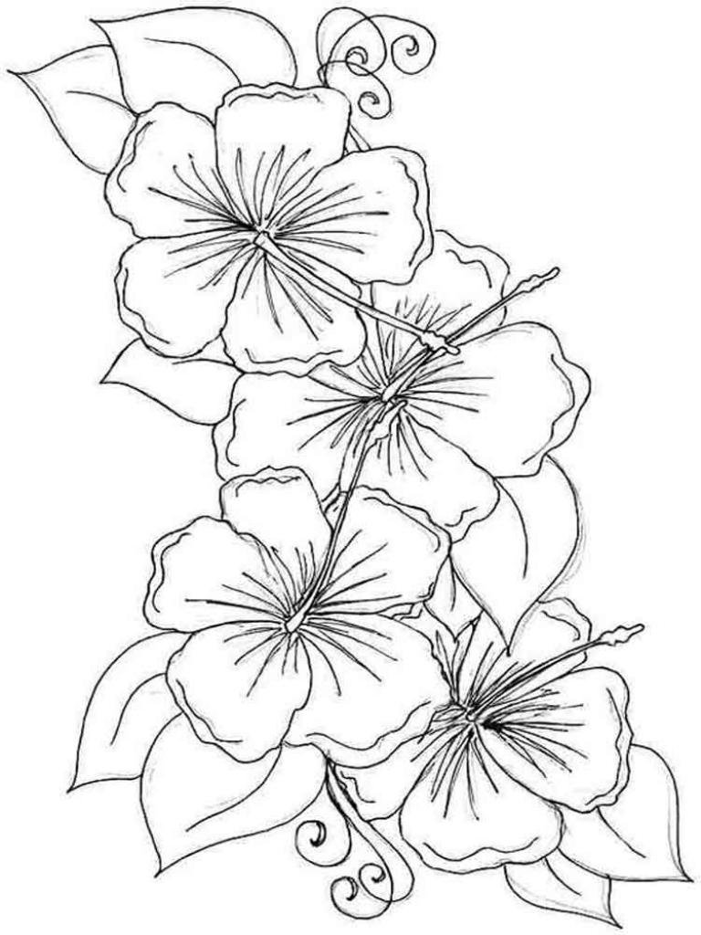 Printable Hibiscus Coloring Pages for Kids Arresting Hawaiian Flower ...