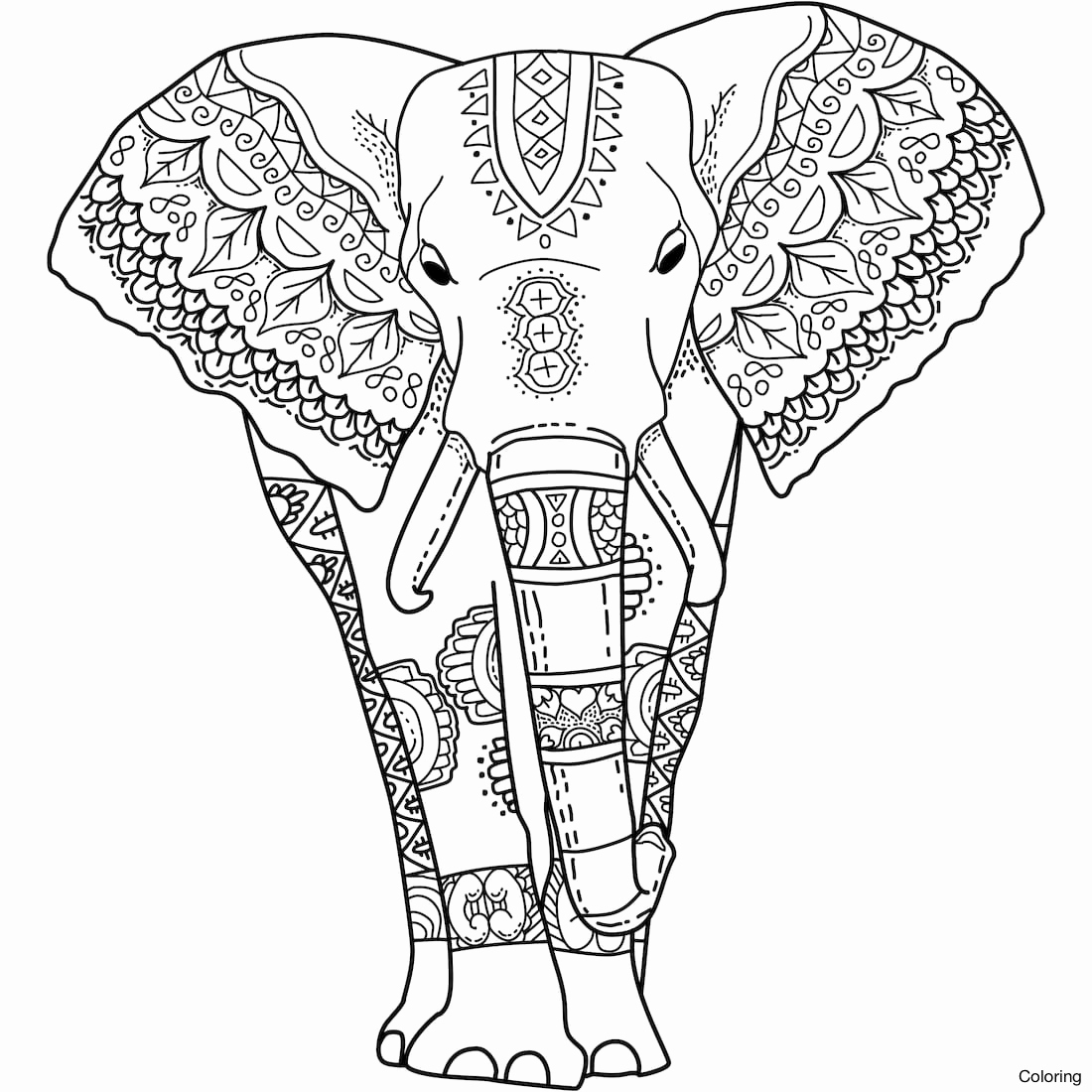 Elephant Mandala Coloring Pages Free For Adults Printable Gallery Of