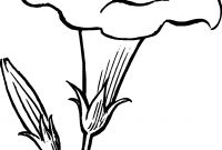 Daffodils Coloring Pages - Eletragesi Daffodil Clipart Black and White Gallery
