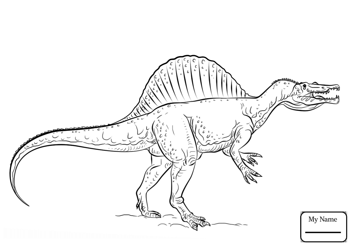 Fascinating Dinosaur Coloring Pages Spinosauru 1681 Unknown Collection Of Dinosaur Clipart Coloring Page Triceratop Pencil and In Color Gallery
