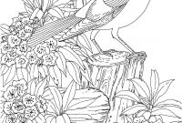 Coloring Pages Birds - Free Adult Coloring Pages Birds Printable Adult Coloring Pages Collection