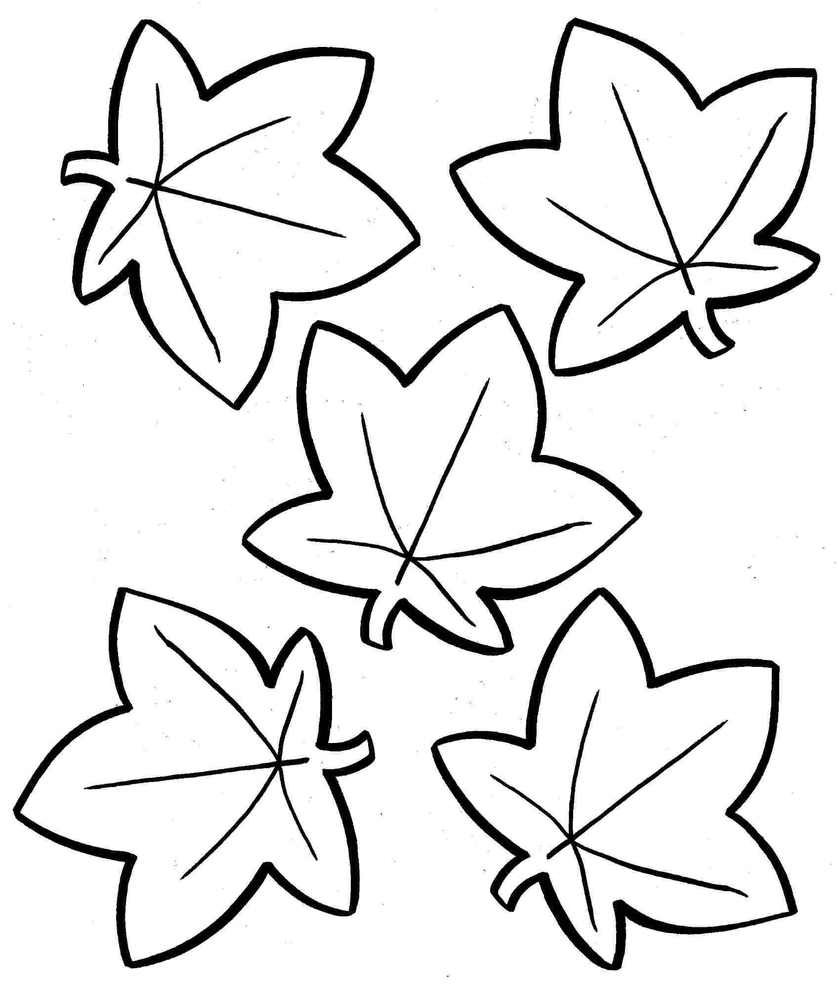 Free Fall Coloring Pages for Preschoolers Collection Of Impressive Maple Leaf Coloring Page Download Free Leaves Printable to Print
