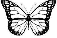 Monarch butterfly Coloring Pages - Free Printable butterfly Coloring Pages for Kids to Print