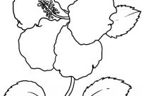 Coloring Pages Hawaiian Flowers - Free Printable Hibiscus Coloring Pages for Kids Gallery