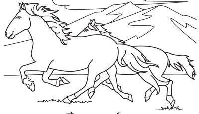 Coloring Pages Of Horses - Free Printable Horse Coloring Pages for Kids Collection