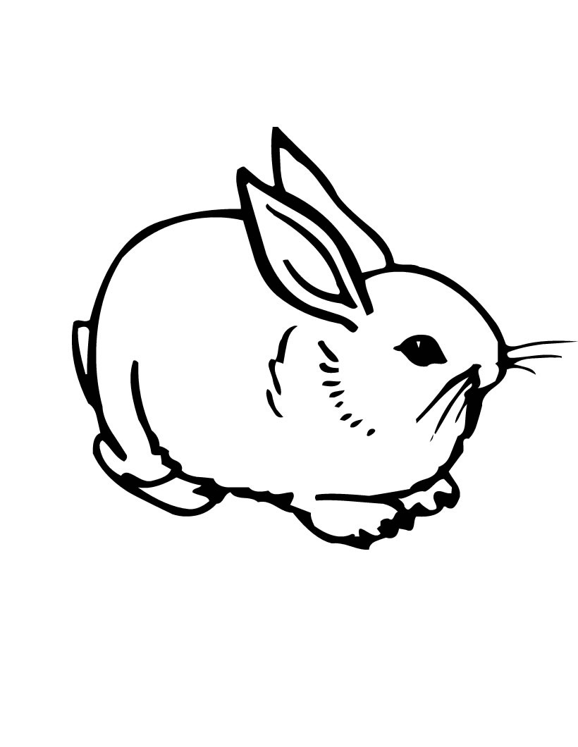 Coloring Pages Of A Rabbit Printable 11d - Free For Children