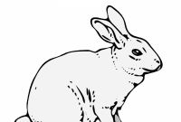 Coloring Pages Of A Rabbit - Free Printable Rabbit Coloring Pages for Kids to Print