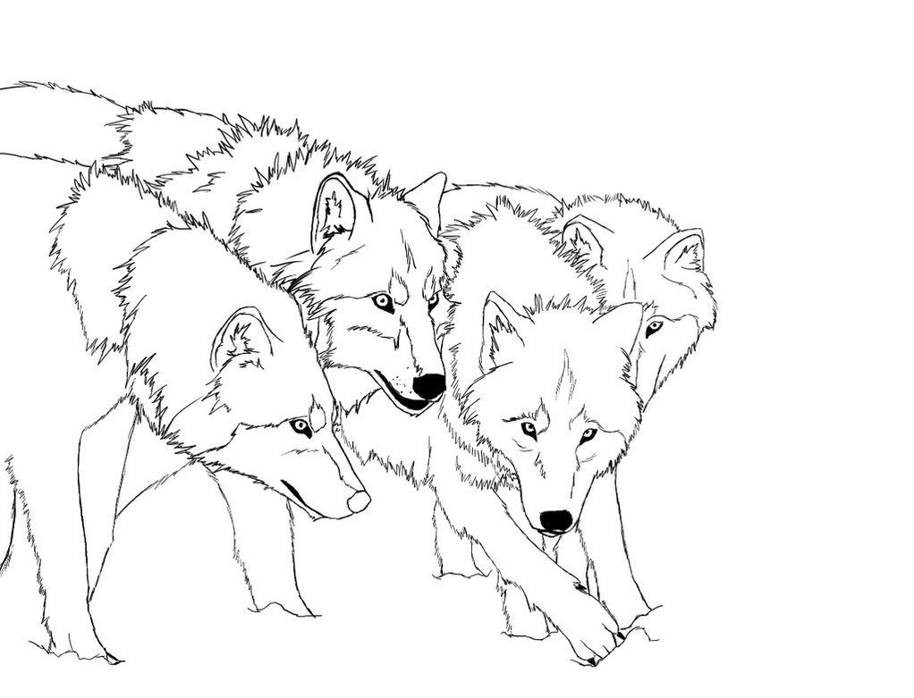Wolf Coloring Pages Printable Printable 13o - Free For Children