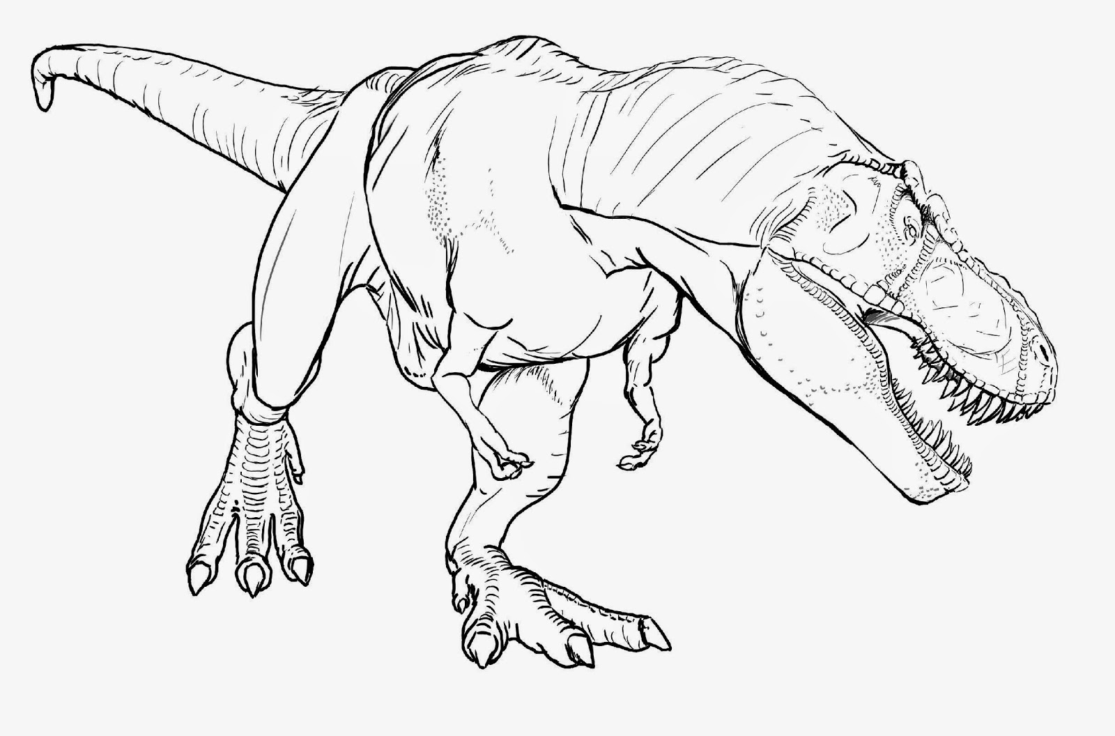 Free T Rex Dinosaurs Coloring Pages 6248 T Rex Dinosaurs Coloring to Print Of Dinosaur Clipart Coloring Page Triceratop Pencil and In Color Gallery