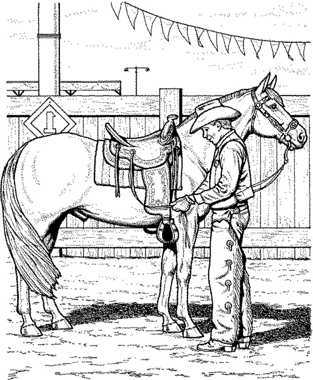 Fun Horse Coloring Pages for Your Kids Printable to Print Of Horse Detailed Coloring Pages Gallery