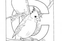 Arizona Cardinals Coloring Pages - Giant Goldenrod Flowersoring Pages for Kids Unusual Cardinal Arizona Collection