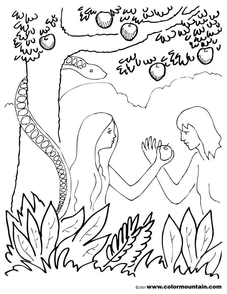 Great Sunday School Creation Coloring Page with Adam and Eve Free Download Of And Eve Coloring Pages Coloring Pages Download